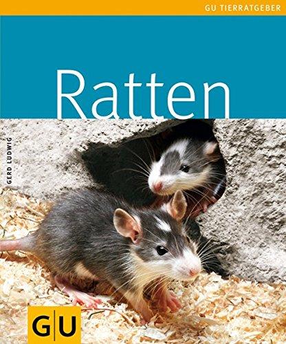 Preisvergleich Produktbild Ratten (GU TierRatgeber)