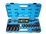 BERGEN Professional 14 Stücke Injector Ausdrücker mit Common Rail Adaptor BER5538