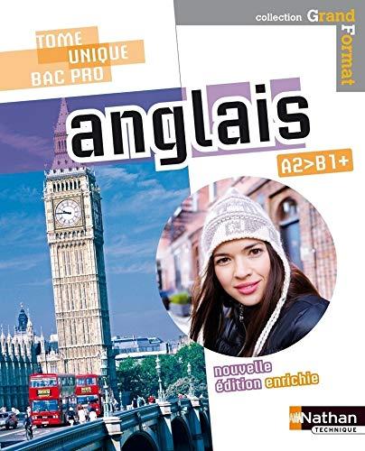 Anglais Bac Pro - Niveau A2>B1+ par M.-L. Perillat-Mercerot, Linda Northrup