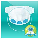 Pampers Baby-Dry Nappies Monthly Saving Pack - Size 5, Pack of 144 Bild 4