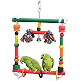 B&P Colorful Bird Swing Toy Funny Pet Parrot Bird Chewing Toys (Coloured Bird Toy -A)