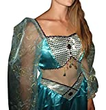 Disney Store Deluxe Jasmine Adult Costume Womens Medium 8-10 Aladdin