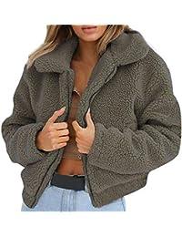 NINGSANJIN Damen Oberteile Jacket Lang Mantel Sweatjacke Pullover Sweatshirt Langarm Winterjacke Warm Artificial Wool Coat Zipper Jacket Winter Parka Outerwear