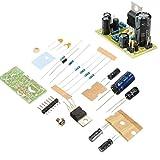 SODIAL(R) TDA2030A Audio Endverstaerker Board Module Mono Stereo Verstaerker Subwoofer DIY Kits