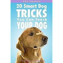 Dog Training: 20 Smart Dog Tricks You Can Teach Your Dog (English Edition)