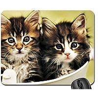 Gattini di Rachael Hale Mouse Pad, Mousepad