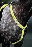 Equi-Flector Breastplate - Bright Yellow: Cob/Full