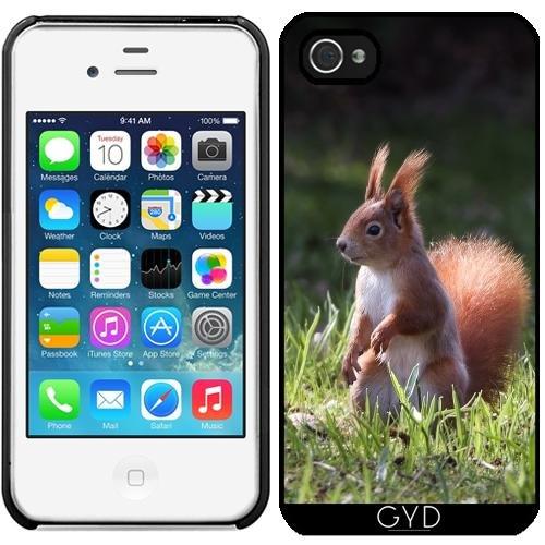 Leder Flip Case Tasche Hülle für Apple iPhone 6/6S - Leuchtenden Eichhörnchen Auf Hintergrundbeleuchtung by UtArt Starre Kunststoff