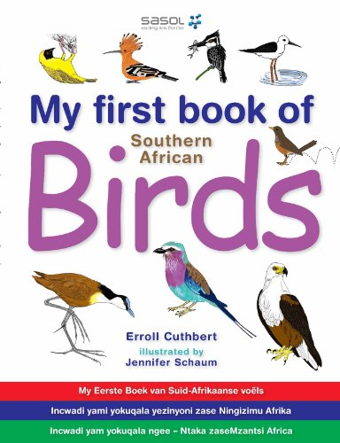 My First Book of Southern African Birds (English Edition) -