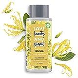 Love Beauty and Planet - Shampoo vegano Oasis riparatore, olio di cocco bio/ylang ylang, flacone da 400 ml