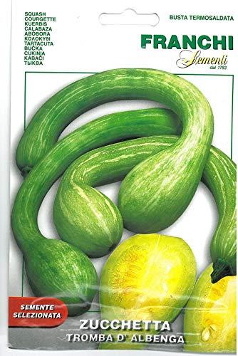 Portal Cool Franchi Samen Zucchini Trompete D'Albenga Courgette