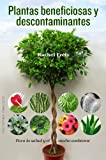Plantas Beneficiosas Y Descontaminantes (SALUD Y VIDA NATURAL)