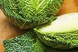 Semi di cavolo verza - Brassica oleracea var. sabauda - 640 semi - 640 semi