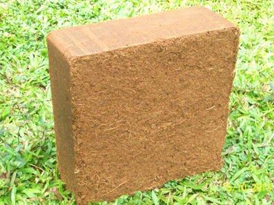5x 70L Humusziegel Kokoserde, Aussaaterde Anzuchterde Quellerde Kokosblumenerde