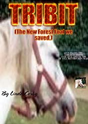 TRIBIT (The New Forest Foal we saved.) (True Life Events.)
