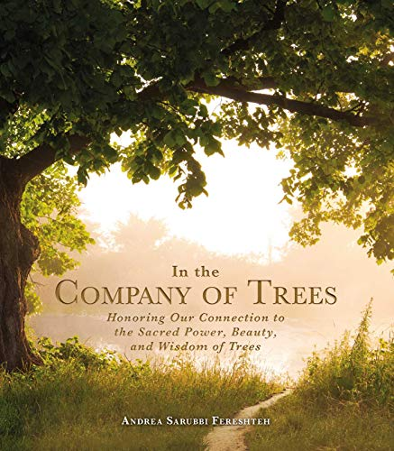 In the Company of Trees: Honoring Our Connection to the Sacred Power, Beauty, and Wisdom of Trees (English Edition)