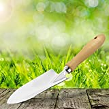 Garten Handschaufel Bon Jardin verzinkt 30 cm Griff aus Buchenholz