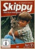 Skippy - Das Buschkänguruh: Teil 1 [4 DVDs]