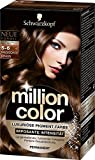 Million Color Intensiv-Pigment-Farbe 5-6 Magisches Braun  Stufe 3, 3er Pack (3 x 126 ml)