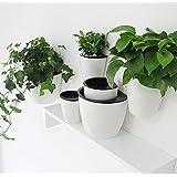 suchergebnis auf f r wand blumentopf garten. Black Bedroom Furniture Sets. Home Design Ideas