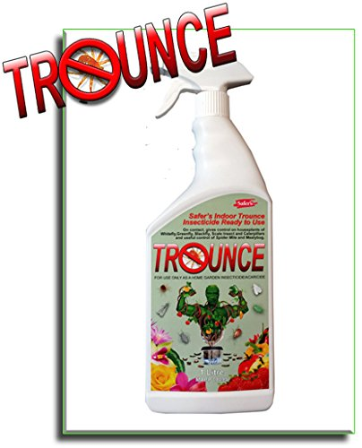 trounce-spray-a-natural-organic-pesticide-for-spider-mites-and-other-bugs-1l-killermite