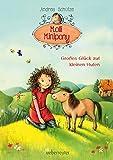 Molli Minipony: Großes Glück auf kleinen Hufen