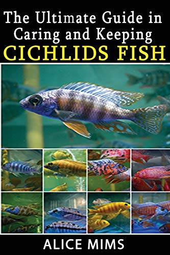 The Ultimate Guide in Caring and Keeping Cichlids Fish (Cichlid Fisch African)