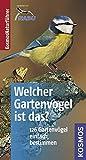Welcher Gartenvogel ist das?: Kosmos Basic (Kosmos-Naturführer Basics) - Volker Dierschke
