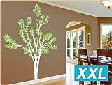 dekodino Wandtattoo Baum Birke dreifarbig