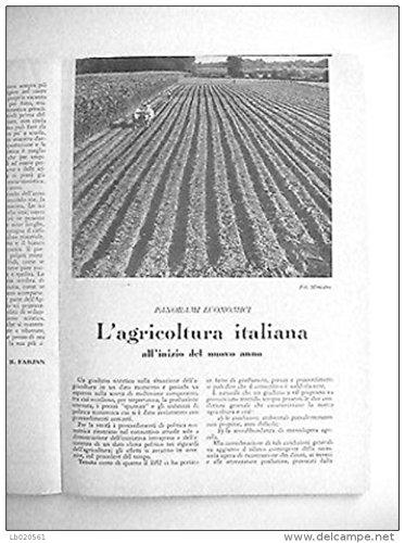 Aldo Pagani - L'AGRICOLTURA ITALIANA ALL'INIZIO DEL NUOVO ANNO