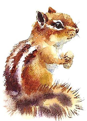 Eichhörnchen Tattoo Tier Tattoo Fake Tattoo Einmal Tattoo zum Kleben KM160