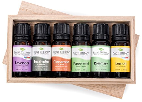 Plant therapy essential oils the best Amazon price in SaveMoney.es