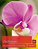 Orchideen: Die schönsten Arten und ihre Pflege