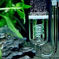 Diffusore CO2 bolle atomizzatore contabolle vetro anidride carbonica ACQUARIO