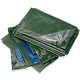 Bio Green Lona Rainexo, 4 x 6 m, 250 g/m², resistente a rayos UV, verde/azul