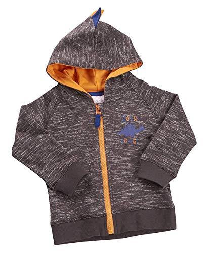 BabyTown Jungen Dinosaurier Hoodie Great Detailliert Design Blau oder Braun für 3-6 Monate bis 18-24m - Braun, 9-12 Monate