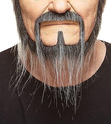 Barbe du squatteur longue, poivre et sel