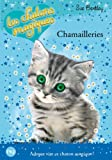 Chamailleries / Sue Bentley | Bentley, Sue. Auteur