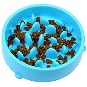 FunRun Gamelle d'alimentation Lente Gamelle Anti-glouton slow Feed avec Clicker Chien pour Chiens Chat - favorise une alimentation saine et une digestion lente