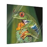 Glasbild - Frosch in der Natur - - 20x20 - Deko Glas - Wandbild aus Glas - Bild auf Glas - Moderne Glasbilder - Glasfoto - Echtglas - Kein Acryl - Handmade