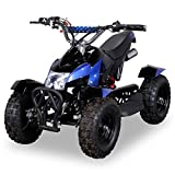 Miniquad Kinder ATV Cobra 49 cc Pocketquad 2-takt Quad ATV Pocket Quad Kinderquad Kinderfahrzeug blau / schwarz