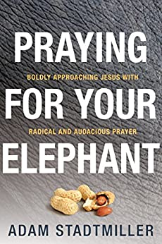 Praying for Your Elephant: Boldly Approaching Jesus with Radical and Audacious Prayer (English Edition) di [Stadtmiller, Adam]