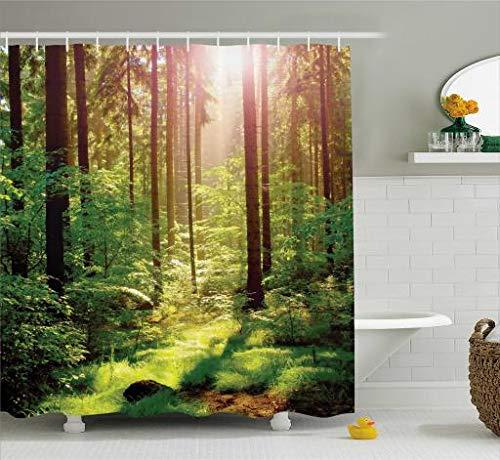 ABAKUHAUS Wald Duschvorhang, Sunset Moss Woods Bäume, aus Stoff inkl.12 Haken Digitaldruck Farbfest Langhaltig Bakterie Resistent, 175 x 200 cm, Grün-Braunen