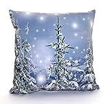heimtexland ® Kissen mit funkelnder LED-Beleuchtung 40 x 40 cm Sterne Weihnachten Deko Kissenhülle Winterwald Tannenbaum Sternenhimmel Weihnachtsdeko Typ588