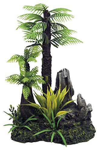 Wave A8011584 Fiji Palme Und Fels