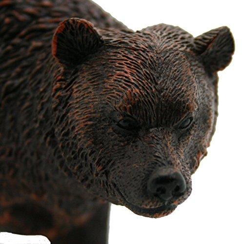 gookha Spielzeug Tiere-Bradley der Bär - Bradley Bar