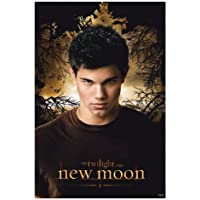 Jacob - Twilight - New Moon - Maxi Poster - 61 cm x 91.5 cm
