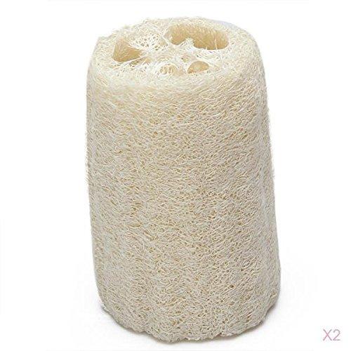 2 esponjas naturales de luffa cortadas