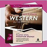 Gitarrensaiten Westerngitarre 12-53 Stahlsaiten ♪♪ KRAFTVOLLER & WARMER KLANG ♪♪ OPTIMIERTE STIMMSTABILITÄT ♪♪ 6-Saiten-Set für Akustik-Gitarre ★AMAZOUND★