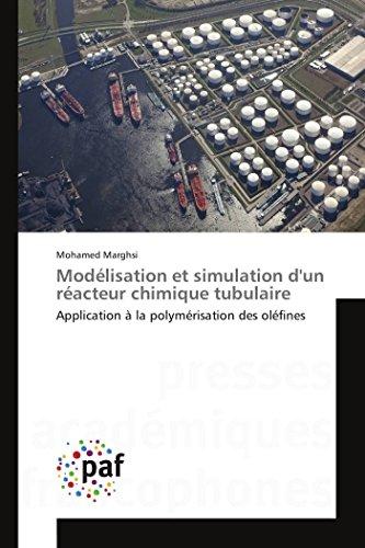 Modélisation et simulation d'un réacteur chimique tubulaire par Mohamed Marghsi